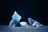Icebergs In Lowell Lake, Canada Photographic Print by David Nunuk