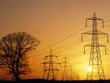 Pylons And Power Lines At Sunset Premium Photographic Print by David Parker