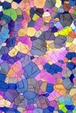 Caffeine Crystals, Light Micrograph Fotodruck von David Parker
