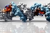 Cisplatin Cancer Drug And DNA Molecule Photographic Print by  Phantatomix