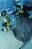 Tourist Divers Photographic Print by Alexis Rosenfeld