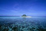 Coral Island Photographic Print by Alexis Rosenfeld