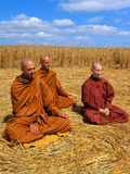 Buddhist Monks Meditating In a Crop Circle Posters by David Parker