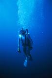 Scuba Diver Fotodruck von Alexis Rosenfeld