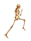 Skeleton Running Photographic Print by  PASIEKA