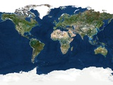 Whole Earth, Satellite Image Fotodruck von  PLANETOBSERVER