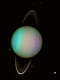 Uranus Photographic Print by  NASA