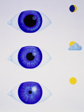 Artwork Showing the Pupil of Eye In Varying Light Photographic Print by Hans-ulrich Osterwalder