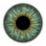 Eye Photographic Print by  PASIEKA