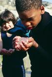 Boy Holding Larvae Photographic Print by Alexis Rosenfeld