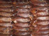 Salted Rabbitfish Posters by David Nunuk