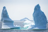 Icebergs, Canada Prints by David Nunuk