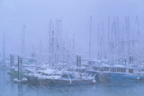 Fishing Boats In Harbour During a Blizzard Prints by David Nunuk