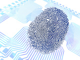 Biometric Fingerprint Scan, Artwork Photographic Print by  PASIEKA