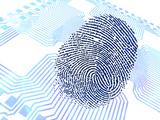 Biometric Fingerprint Scan, Artwork Premium Photographic Print by  PASIEKA