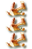 Osteoporosis Photographic Print by Hans-ulrich Osterwalder