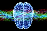 Human Brain, Conceptual Artwork Posters by  PASIEKA
