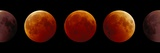 Total Lunar Eclipse, Montage Image Photographic Print by Pekka Parviainen
