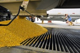 Corn At An Ethanol Processing Plant Photographic Print by David Nunuk