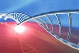 DNA Molecule, Artwork Photo by  PASIEKA