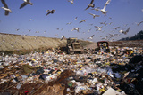 View of a Waste Landfill Site Photographic Print by David Nunuk