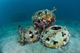 Reef Balls on the Sea Bed, Indonesia Photographic Print by Matthew Oldfield