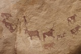 Pictograph of Lion Attack, Libya Photographic Print by David Parker