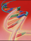 Recombinant DNA Photographic Print by Hans-ulrich Osterwalder