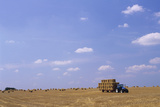Hay Bales Photographic Print by David Nunuk