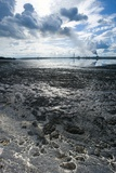 Oil Industry Pollution Photographic Print by David Nunuk