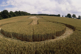 Crop Formation, Lockeridge, Wiltshire Prints by David Parker