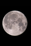 Full Moon In the Night Sky Photographic Print by David Nunuk