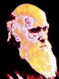 Computer Coloured Portrait of Darwin Photographic Print by  PASIEKA