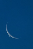 Lunar Occultation of Venus Photographic Print by David Nunuk