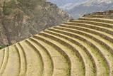 Agricultural Terraces, Pisac, Peru Photographic Print by Matthew Oldfield