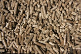 Pelletised Wood Fuel Photographic Print by Ria Novosti