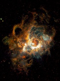 Hubble Space Telescope View of Nebula NGC 604 Print by  NASA