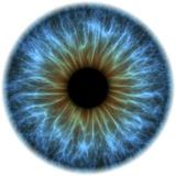 Eye, Iris Premium Photographic Print by  PASIEKA