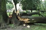 Storm Damage Posters by Ria Novosti