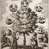 Alchemical Tree, Philosophia Reformata Photographic Print by Middle Temple Library