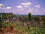 Colonisation of the Amazonian Rainforest Photographic Print by Dr. Morley Read