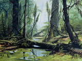 Artist's Impression of a Carboniferous Forest. Photographic Print by Ludek Pesek