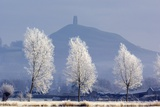 Frost-covered Trees And Glastonbury Tor Photographic Print by Duncan Shaw