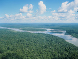 Aerial View of Rio Napo, Eastern Equador Photographic Print by Dr. Morley Read