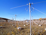Riometer Radio Antennae Photo by Alan Sirulnikoff