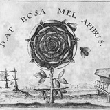 Rosicrucian Mystical Symbol Photographic Print by Middle Temple Library