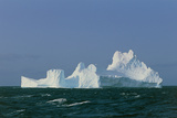 Iceberg Print by Peter Scoones