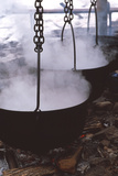 Maple Syrup Manufacture Photographic Print by Alan Sirulnikoff