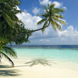 Tropical Beach Photographic Print by Peter Scoones