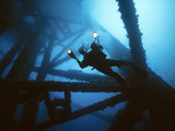 Scuba Diver Photographic Print by Peter Scoones
